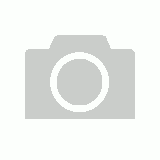 Motorcycle Fixed length Rok Strap